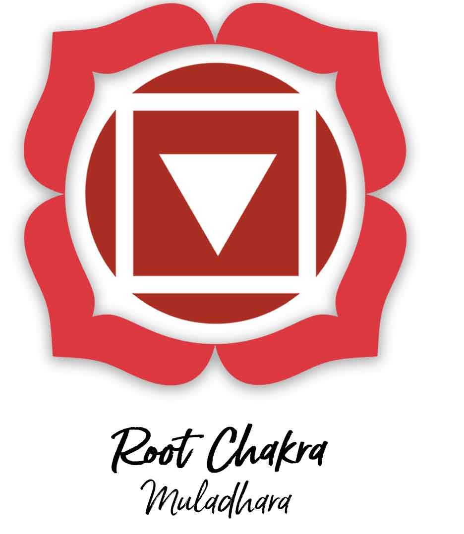 Root Chakra - Survival & Groundedness. learn more about the 7 Chakras a Begginners Guide for Healers and Empaths at http://selfcareforyourspirit.com/blog